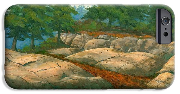 Michael Swanson iPhone Cases - North Shore iPhone Case by Michael Swanson