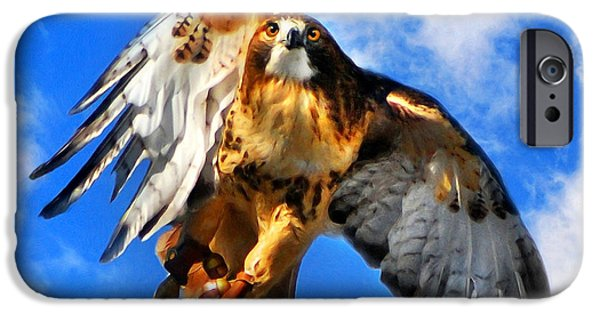 Soaring Paintings iPhone Cases - North Wind iPhone Case by Christina Rollo