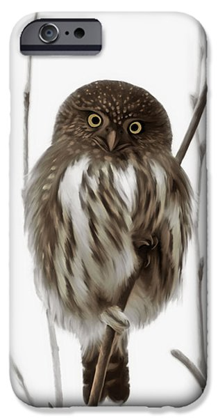 Northern iPhone Cases - Northern Pygmy Owl - Little One iPhone Case by Reflective Moment Photography And Digital Art Images