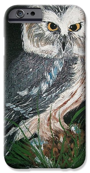 Nature Study Paintings iPhone Cases - Northern Saw-whet Owl iPhone Case by Sharon Duguay