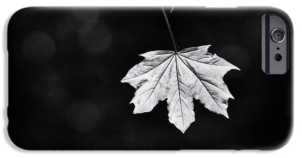 Norway iPhone Cases - Norway Maple Leaf Monochrome iPhone Case by Tim Gainey