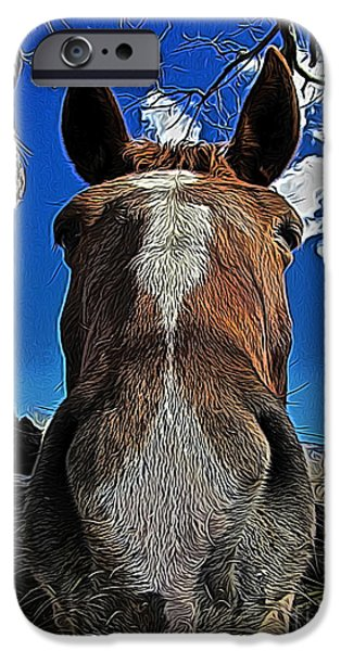 Llama Digital iPhone Cases - Nosey II iPhone Case by Jen  Brooks Art