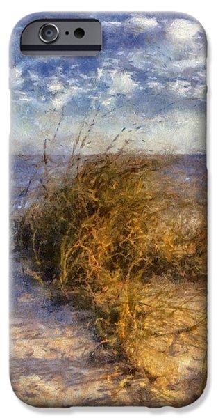 November Dune Grass iPhone Case by Daniel Eskridge