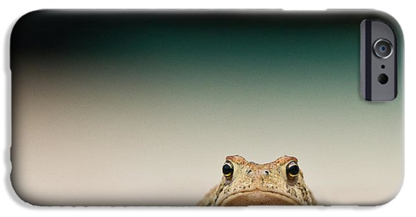 Frogs Photographs iPhone Cases - Nowhere Man iPhone Case by Annette Hugen