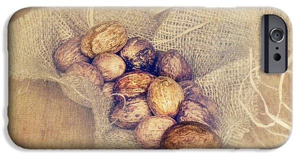 Net Mixed Media iPhone Cases - Nutritious Nuts iPhone Case by Svetlana Sewell