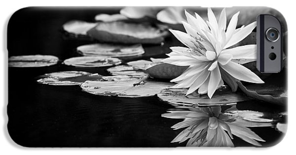 Aquatic Plants iPhone Cases - Nymphaea Maria iPhone Case by Tim Gainey