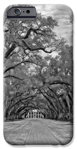 Oak Alley 3 monochrome iPhone Case by Steve Harrington