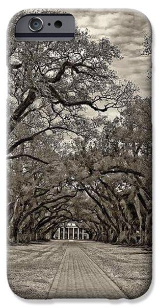 Oak Alley 3 sepia iPhone Case by Steve Harrington