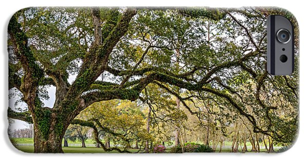 Overhang iPhone Cases - Oak Alley Reverie iPhone Case by Steve Harrington
