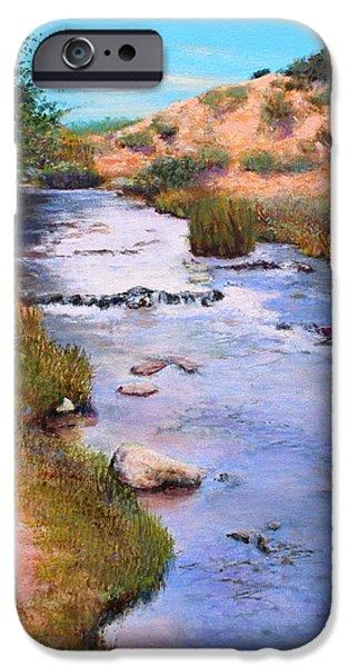 Oak Creek iPhone Cases - Oak Creek iPhone Case by M Diane Bonaparte