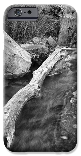 West Fork iPhone Cases - Oak Creek Texture iPhone Case by Larry Pollock