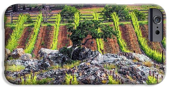 Metal Vineyard Print iPhone Cases - Oak in Vineyard iPhone Case by L J Oakes