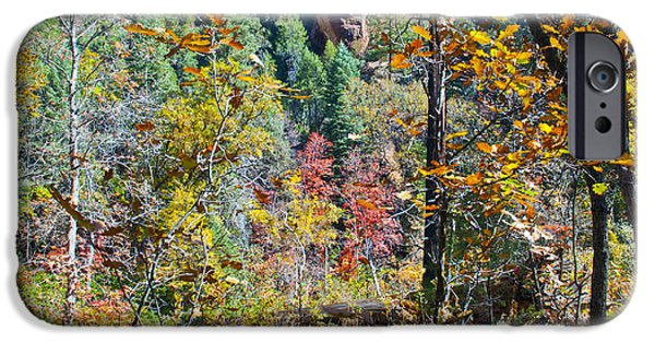 West Fork iPhone Cases - Oak Leaves iPhone Case by Brian Lambert
