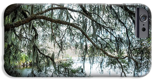 Overhang iPhone Cases - Oak Tree Lake Alice iPhone Case by Louis Ferreira