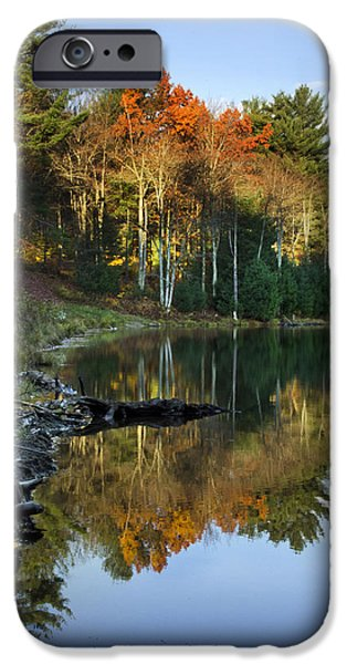 States iPhone Cases - Oakley Corners State Forest iPhone Case by Christina Rollo