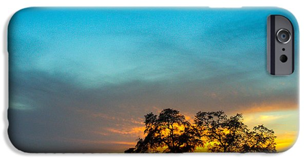 A Summer Evening iPhone Cases - Oaks and Sunset 2 iPhone Case by Terry Garvin