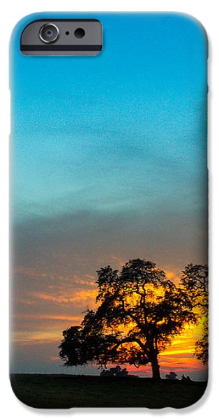 Oaks and Sunset 2 iPhone Case by Terry Garvin