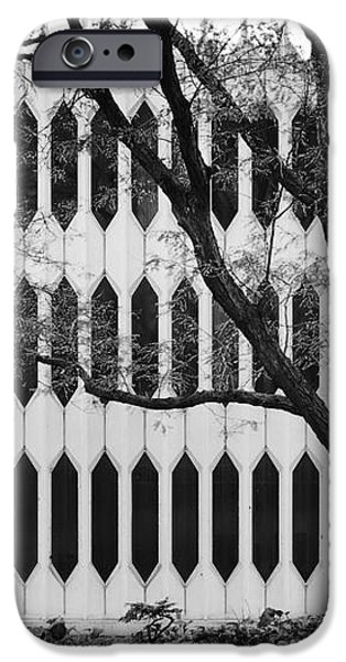 Oberlin College Bibbins Hall iPhone Case by University Icons