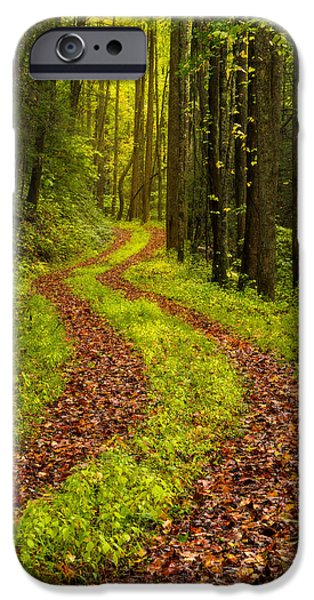 Autumn Road iPhone Cases - Obscured iPhone Case by Chad Dutson