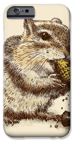 Chipmunk iPhone Cases - Occupational Hazard iPhone Case by Eric Fan
