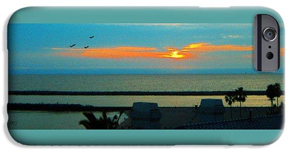 Sea Birds iPhone Cases - Ocean Sunset With Birds iPhone Case by Ben and Raisa Gertsberg