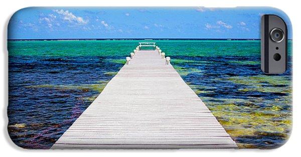 Manatee iPhone Cases - Ocean walkway iPhone Case by Carey Chen