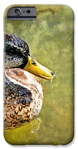 October Duck iPhone Case by Marty Koch