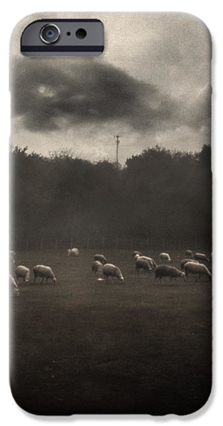 October Insight iPhone Case by Taylan Soyturk