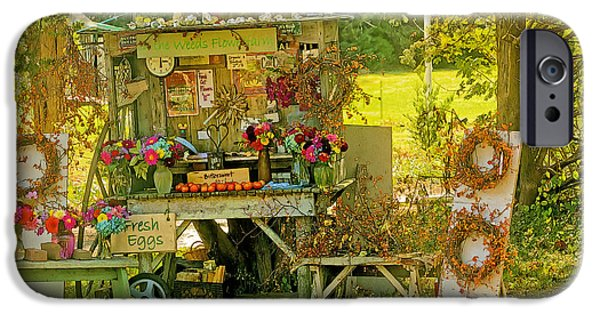 Farm Stand iPhone Cases - October Is Bittersweet Time On Cape Cod iPhone Case by Constantine Gregory