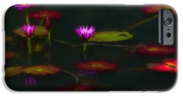 Oktoberfest iPhone Cases - October Lilies iPhone Case by Doug Sturgess
