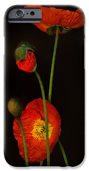 Award Winning Art iPhone Cases - Odyssey iPhone Case by Toni Chanelle Paisley