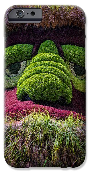 Eyebrow iPhone Cases - Ogre iPhone Case by Joan Carroll