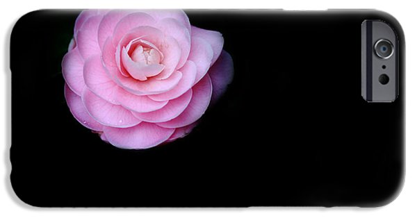 Camellia iPhone Cases - Oh Camellia iPhone Case by Rebecca Cozart