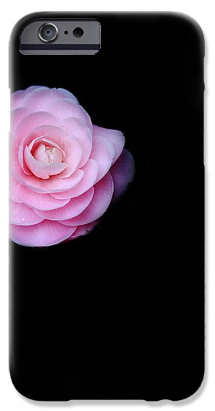 Oh Camellia iPhone Case by Rebecca Cozart
