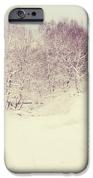 Winter Scene iPhone Cases - Oh Lord Who Will Comfort Me iPhone Case by Jenny Rainbow