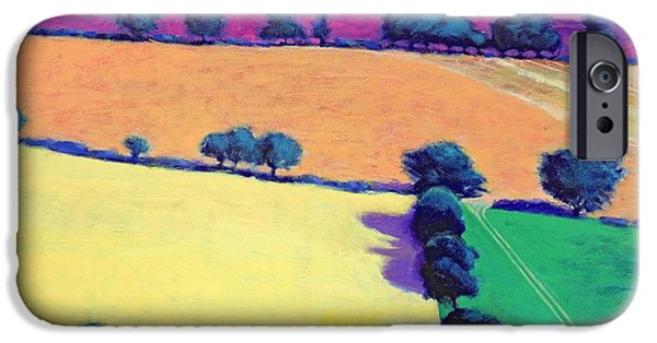 Aerial View iPhone Cases - Oil Acrylic On Card iPhone Case by Paul Powis