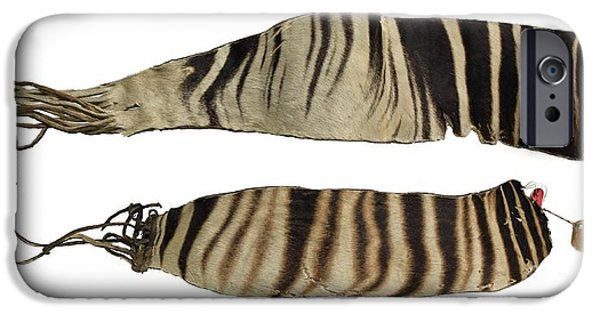 Nineteenth iPhone Cases - Okapi Hide iPhone Case by Natural History Museum, London