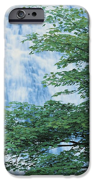 Descending iPhone Cases - Oku-nikko Tochigi Japan iPhone Case by Panoramic Images