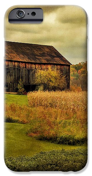 Old Barn In October iPhone Case by Lois Bryan