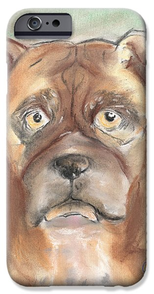 Old Boxer iPhone Case by Christine Callahan
