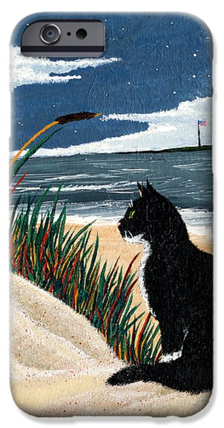 Flag iPhone Cases - Old Cat and the Sea iPhone Case by Edward Fuller