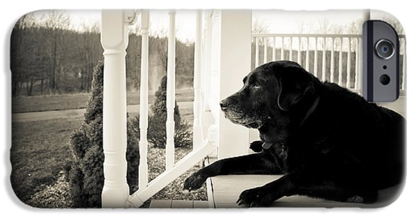 Porch iPhone Cases - Old dog on a Front Porch iPhone Case by Diane Diederich