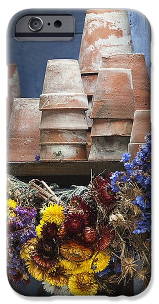Old English Victorian Potting Shed iPhone Case by Tim Gainey