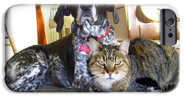 Puppies iPhone Cases - Old Friends Cat n Dog iPhone Case by Michele  Avanti