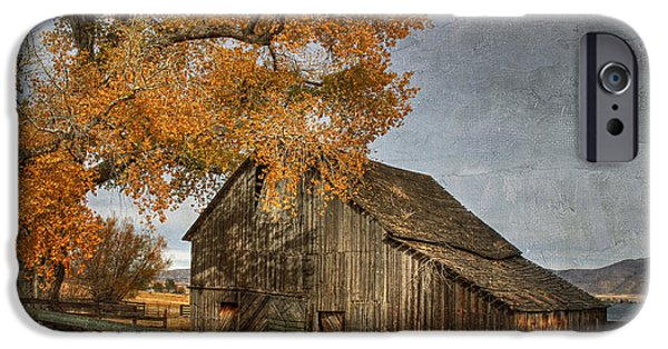 Old Barns iPhone Cases - Old Friends iPhone Case by Donna Kennedy