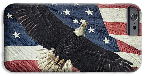 Recently Sold -  - Independance Day iPhone Cases - Old Glory And An American Icon D6000 iPhone Case by Wes and Dotty Weber