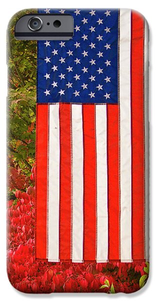 Old Glory iPhone Cases - Old Glory iPhone Case by Ron Roberts