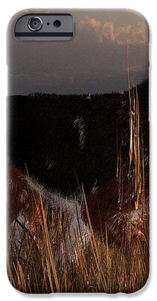 Old Hunting Dog iPhone Case by Daniel Eskridge