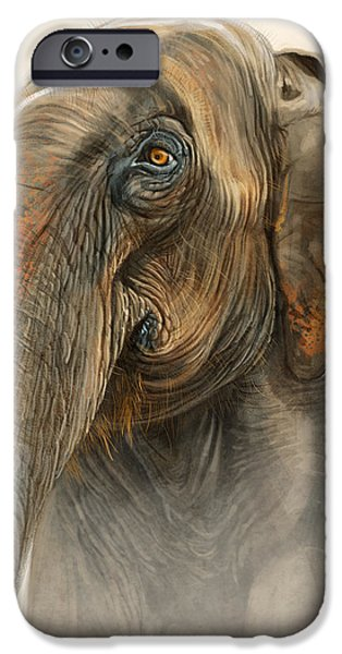 Asia iPhone Cases - Old Lady of Nepal 2 iPhone Case by Aaron Blaise