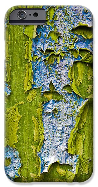 Nature Abstracts iPhone Cases - Old Paint iPhone Case by Frank Tschakert